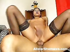 Downcast Nuisance Shemale Gets Pounded